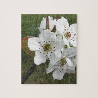 Blossoming pear tree against the green garden jigsaw puzzle