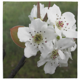 Blossoming pear tree against the green garden napkin