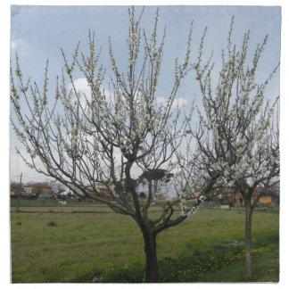 Blossoming pear tree in the garden  Tuscany, Italy Napkin