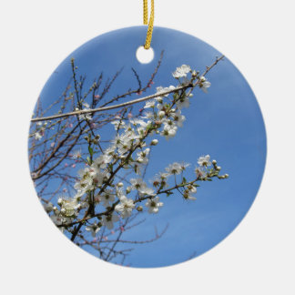 Blossoming plum against the sky . Tuscany, Italy Ceramic Ornament