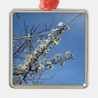 Blossoming plum against the sky . Tuscany, Italy Metal Ornament