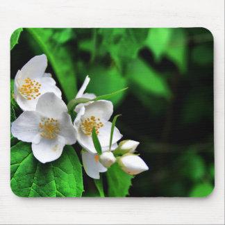 Blossoming seasons mousepad