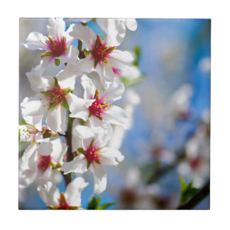 Blossoming tree branch with white flowers ceramic tile