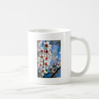 Blossoming tree branch with white flowers coffee mug