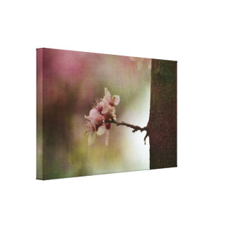 Blossoming Tree Gallery Wrapped Canvas