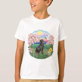 BLossoms - Black Labrador Tshirt