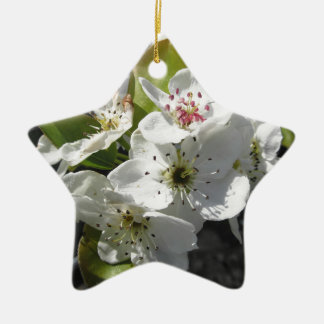 Blossoms of a pear tree in spring ceramic star decoration
