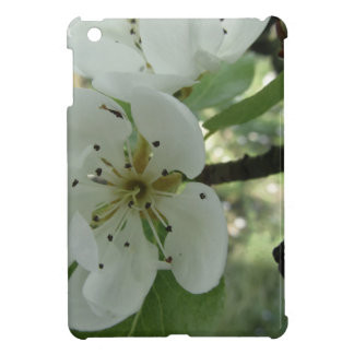 Blossoms of a pear tree in spring . Tuscany, Italy iPad Mini Cover