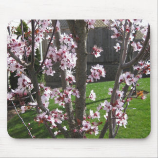 Blossoms of Spring Mouse Pad