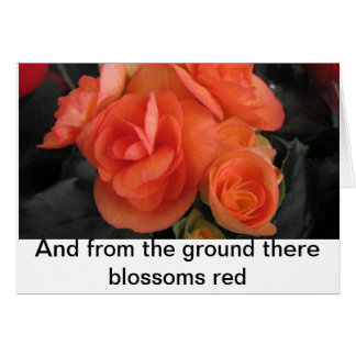 Blossoms red greeting card