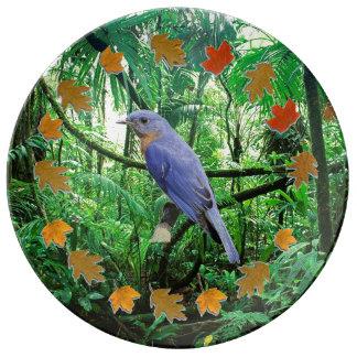 Blubird Plate