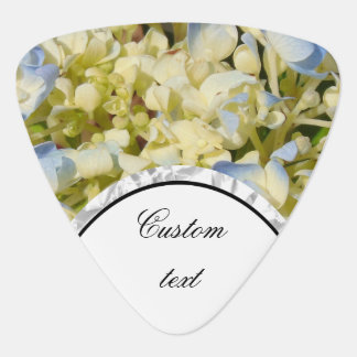 Blue and creamy white hydrangea flowers photo plectrum