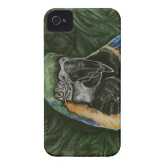 Blue and Gold Macaw Blackberry case