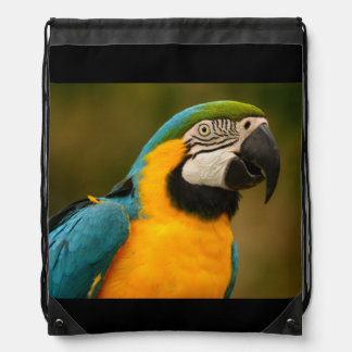 blue and gold macaw drawstring bag