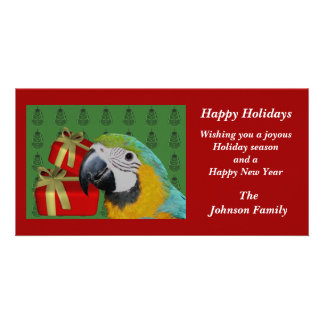 Blue And Gold Macaw Parrot Christmas Holiday Photo Greeting Card