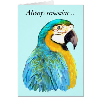 Blue and Gold Macaw Parrot Remembrance Card
