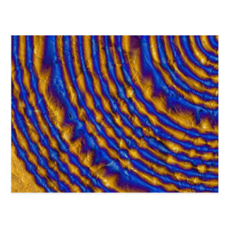 Blue and Gold Paint Spiral Postcard