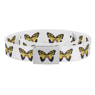 Blue and Golden Butterflies Belt