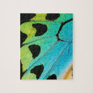 blue and green butterfly wing jigsaw puzzle