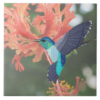 Blue and Green Hummingbird and Orange Hibiscus Ceramic Tile