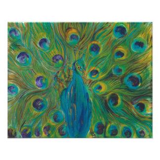 Blue And Green Peacock,  Enlarged Satin Photos Photo Print