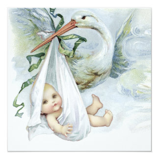 Blue and Green Stork Baby Shower 13 Cm X 13 Cm Square Invitation Card