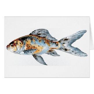Blue and Orange Shubunkin Goldfish Fish Drawing Card