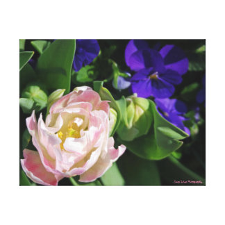 Blue and Pink Flowers Canvas Print
