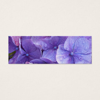 Blue and pink hortensia close up mini business card