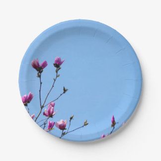 Blue and Pink Magnolia Paper Plate