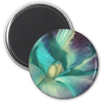 Blue and purple orchid close up magnets
