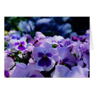 Blue and Purple Pansies! Greeting Card