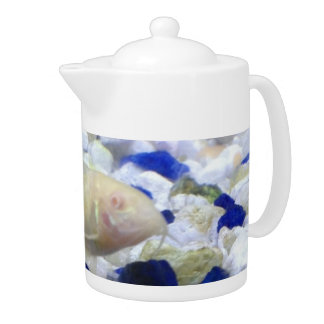 Blue and white pebbles and Albino cat fish