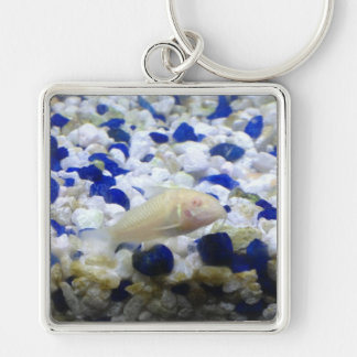 Blue and white pebbles and Albino cat fish Key Ring