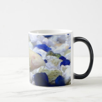 Blue and white pebbles and Albino cat fish Magic Mug