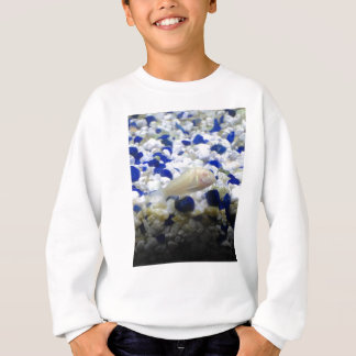 Blue and white pebbles and Albino cat fish Sweatshirt