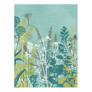 Blue and White Wildflower Field Postcards