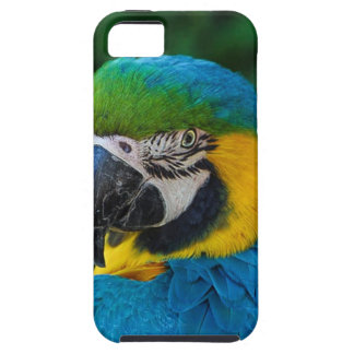 Blue and Yellow Bird Case For The iPhone 5