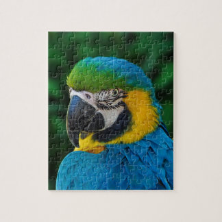 Blue and Yellow Bird Jigsaw Puzzle