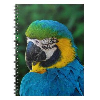 Blue and Yellow Bird Spiral Notebook