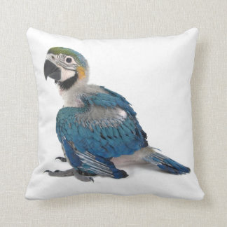 Blue and yellow Macaw Cushion