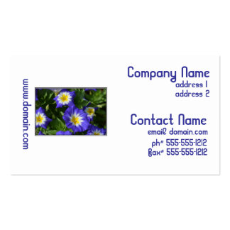 Blue and Yellow Morning Glories Business Card