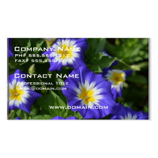 Blue and Yellow Morning Glories Business Cards