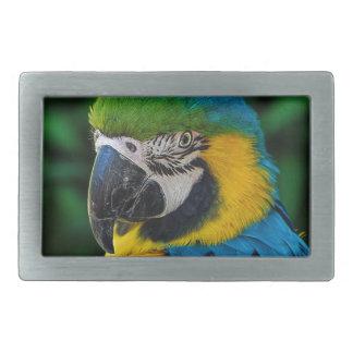 Blue and Yellow Parrot Rectangular Belt Buckles