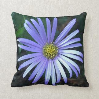 Blue Aster Cushion