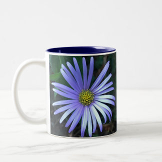 Blue Aster Two-Tone Coffee Mug