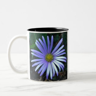 Blue Aster Two-Tone Coffee Mug
