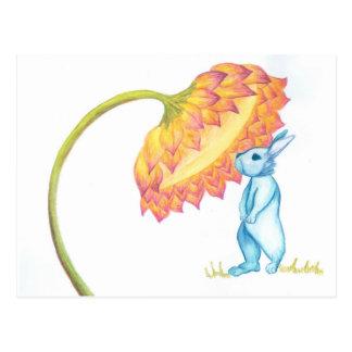 blue baby bunny postcard