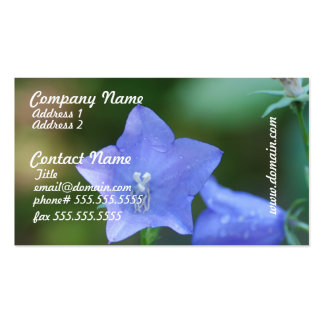 Blue Balloon Flowers Business Cards