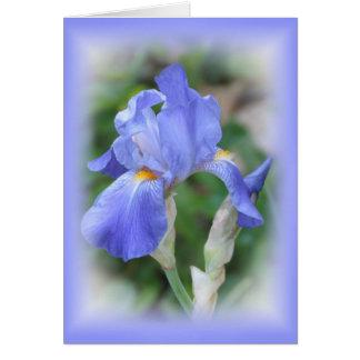 Blue Beauty - Iris Card